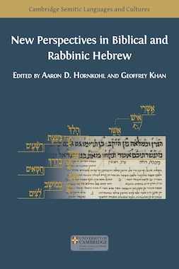 New Perspectives in Biblical and Rabbinic Hebrew - cover